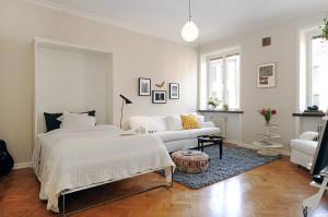 Фото гостиной и спальни в одной комнате